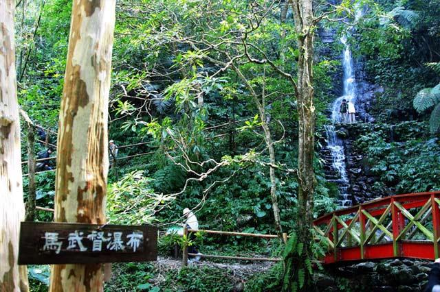 新竹馬武督探索森林